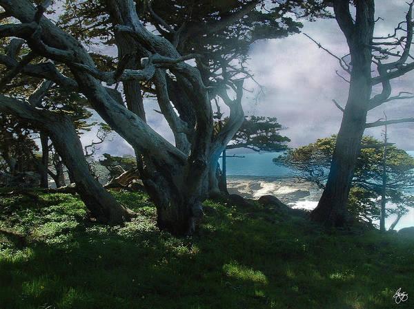 Photograph - Fog Intrusion Point Lobos by Wayne King