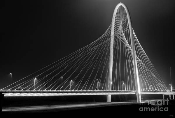 Photograph - Fog Light And Lines II by Imagery by Charly