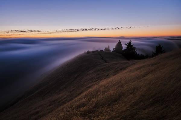 Landscape Digital Art - Fog by Maye Loeser