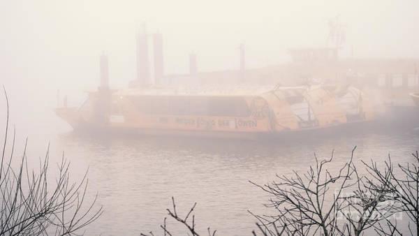 Photograph - Fog On The Elbe by Marina Usmanskaya