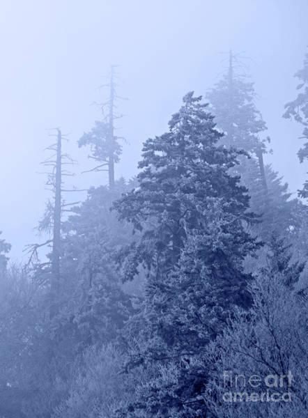 Wall Art - Photograph - Fog On The Mountain by John Stephens