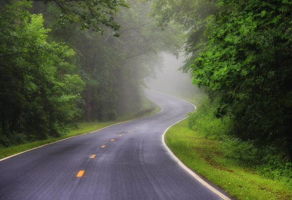 Photograph - Fog On The Parkway 2 by Rachel Cohen