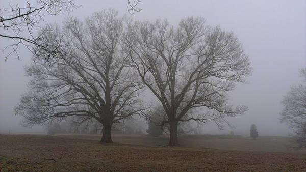 Photograph - Fog On The Yorktown Battlefield by Liza Eckardt