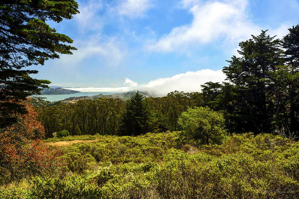 Photograph - Fog Rolling Into Bay Area by Brian Tada