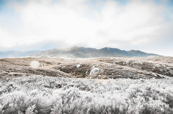 Trial Harbour Wall Art - Photograph - Fog Snow And Ice Landscape by Jorgo Photography - Wall Art Gallery