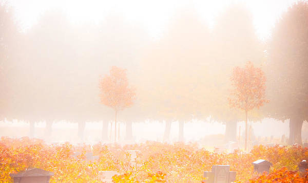Remembrance Photograph - Fog Swept In by Maggie Terlecki