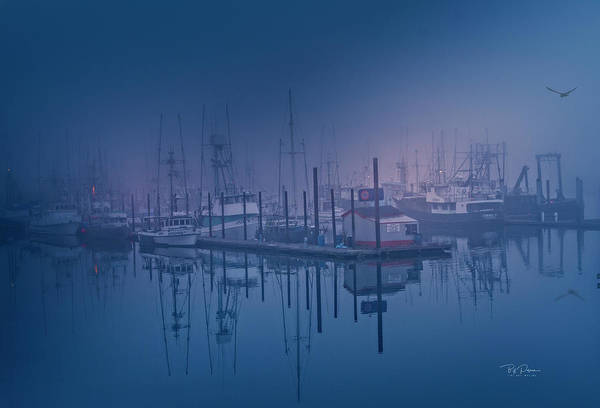 Photograph - Foggy Bay Front by Bill Posner