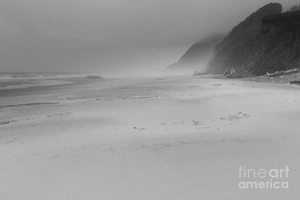 Oregon Dunes Photograph - Foggy Beach by Masako Metz