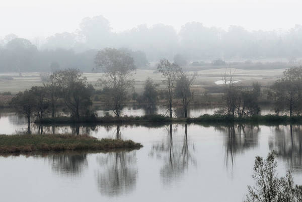 Photograph - Foggy Bottoms by Nicholas Blackwell