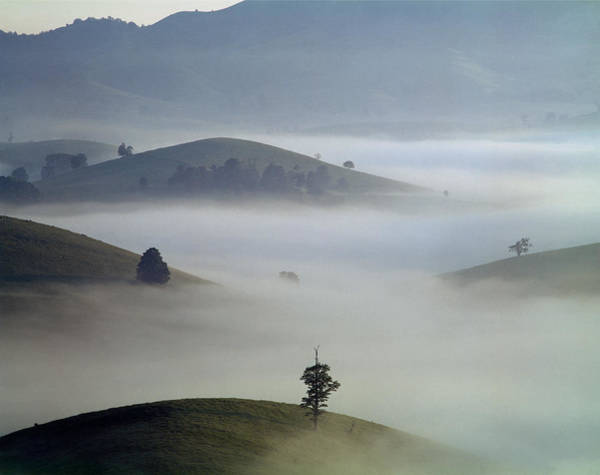 Photograph - 143005-foggy Burkes Valley  by Ed  Cooper Photography