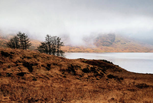 Photograph - Foggy Day At Loch Arklet by Jeremy Lavender Photography