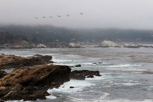 Photograph - Foggy Day At Point Lobos Reserve - 3 by Christy Pooschke