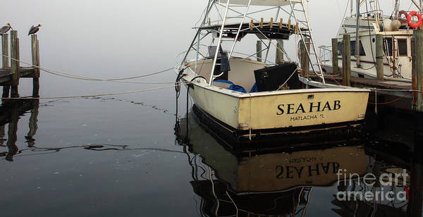 Wall Art - Photograph - Foggy Day On The Sea Hab by Jon Neidert