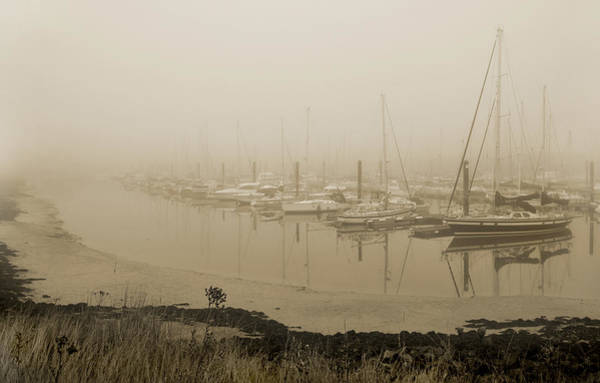 Wall Art - Photograph - Foggy Day. by Terence Davis