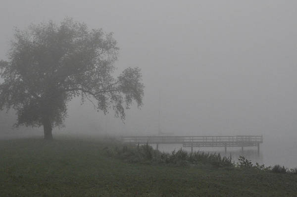 Photograph - Foggy Dock by Tim Nyberg