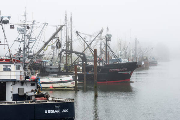 Photograph - Foggy Docks by Robert Potts