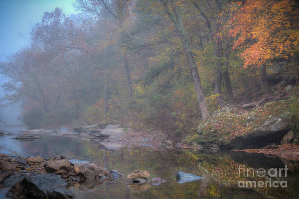 Photograph - Foggy Fall by Larry McMahon