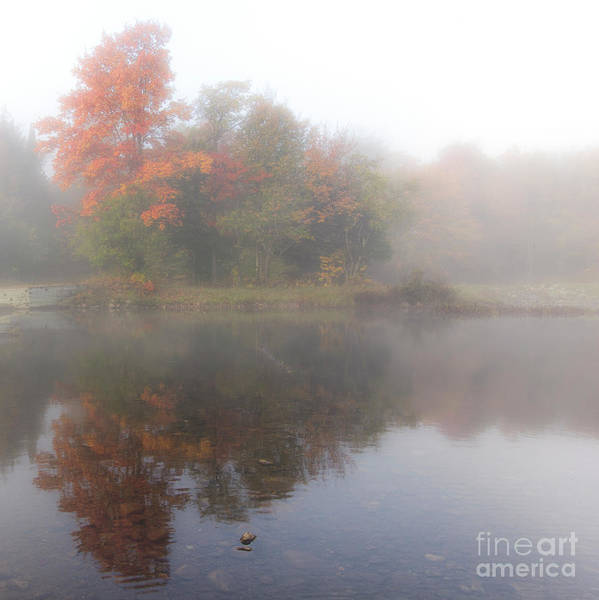 Photograph - Foggy Fall Reflections - Square by Rod Best