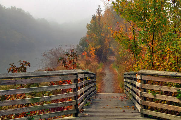 Photograph - Foggy Fall Trail by Jerry Gammon