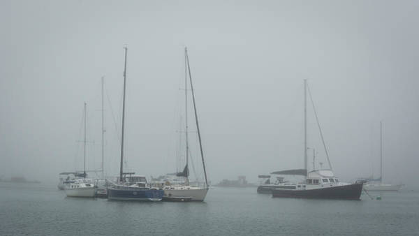 Photograph - Foggy Freeport by Guy Whiteley