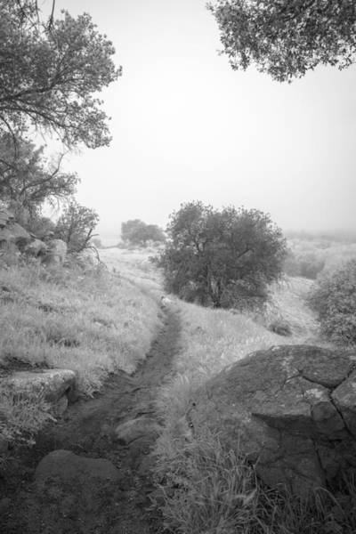 Photograph - Foggy Highland Valley Trail by Alexander Kunz