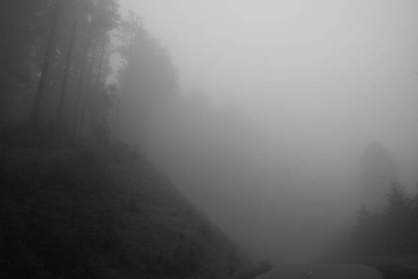 Photograph - Foggy Lc Road II by Dylan Punke