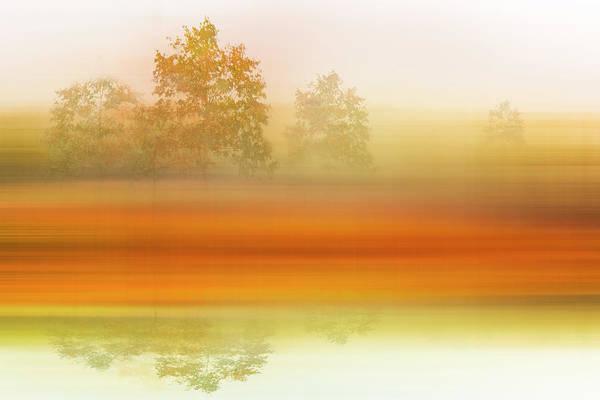 Photograph - Foggy Meadow Dreamscape by Debra and Dave Vanderlaan