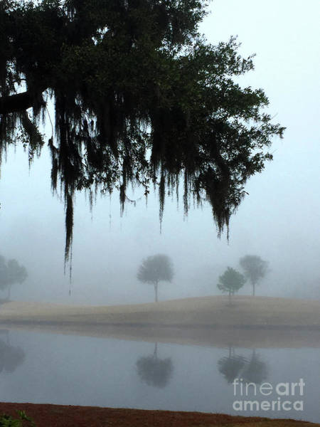 Photograph - Foggy Morn Reflections by Rick Locke