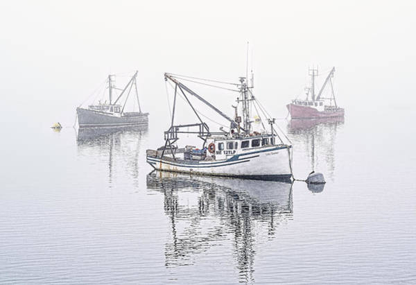 Photograph - Foggy Morning Downtime by Marty Saccone