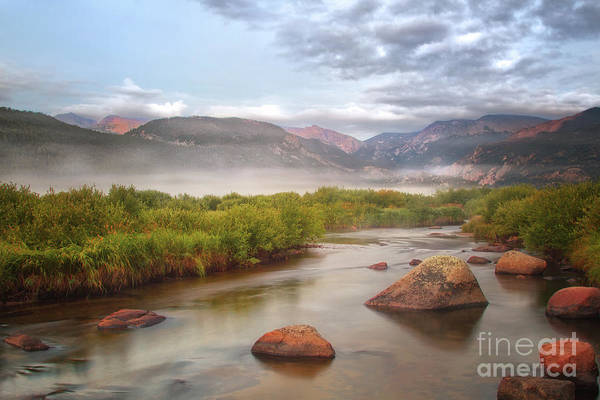Wall Art - Photograph - Foggy Morning In Moraine Park by Ronda Kimbrow