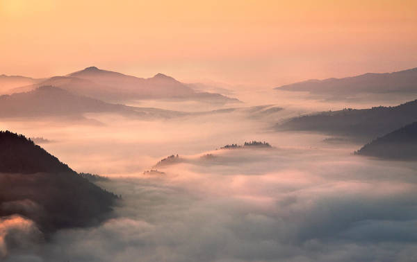 Mist Photograph - Foggy Morning In The Mountains by Fproject - Przemyslaw Kruk