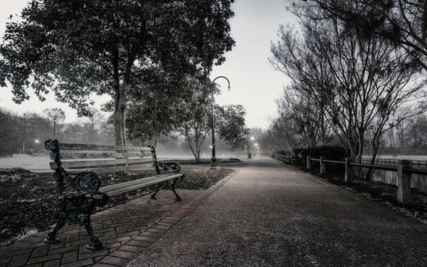 Photograph - Foggy Morning In The Park by Van Sutherland
