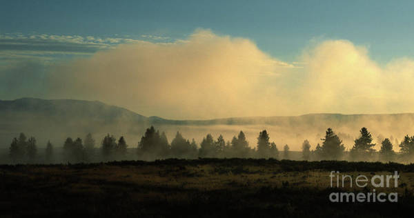 Wall Art - Photograph - Foggy Morning In Yellowstone by Sandra Bronstein