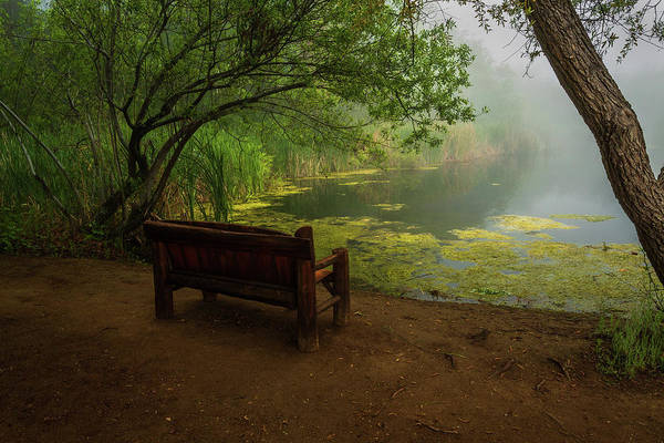Photograph - Foggy Morning On The Pond by Rick Strobaugh