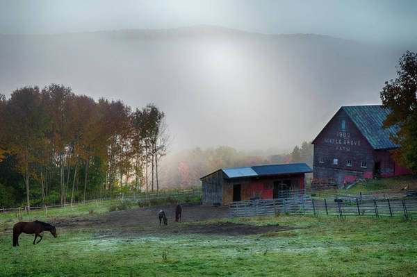 Photograph - Foggy Morning On Vermont Farm by Jeff Folger