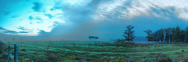 Photograph - Foggy Morning Pasture by Roberto Aloi
