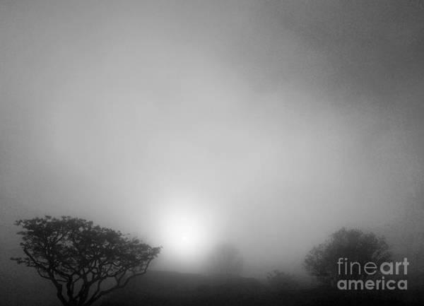 Mount Soledad Wall Art - Photograph - Foggy Morning Sunrise by Eric Suchman
