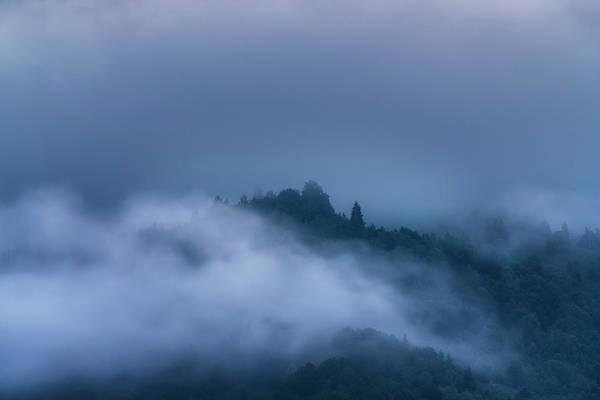 Wall Art - Photograph - Foggy Mornings by Adrian Malanca