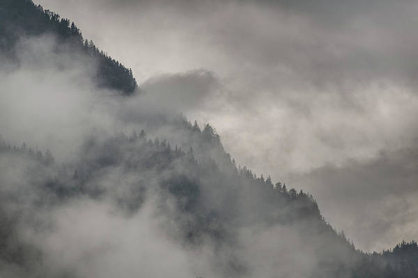Wall Art - Photograph - Foggy Mountain Forest British Columbia Canada by Steve Gadomski