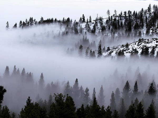 Foggy Mountain Pass Art Print