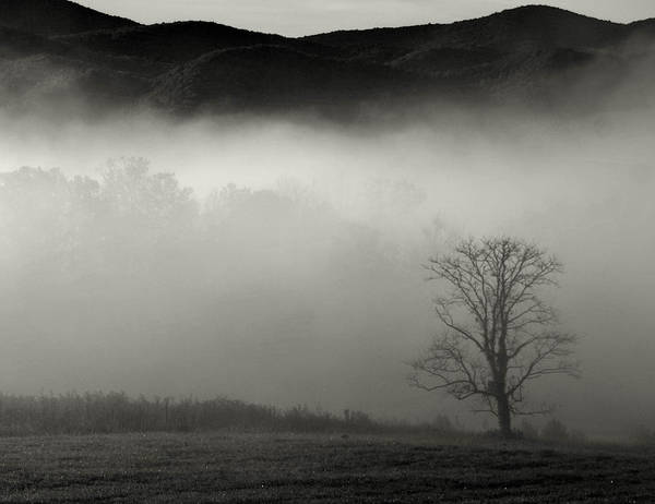 Foggy Mountain-tennessee Art Print