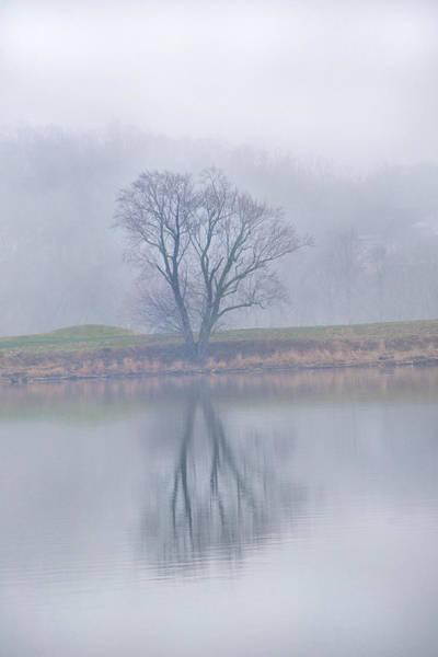 Photograph - Foggy Potomac Tree by Don Johnson
