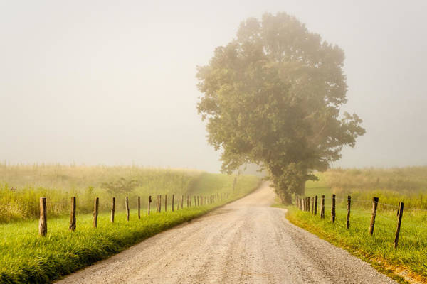 Photograph - Foggy Road by Keith Allen