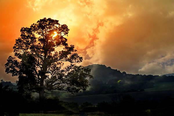 Photograph - Foggy Sunrise by Marty Koch