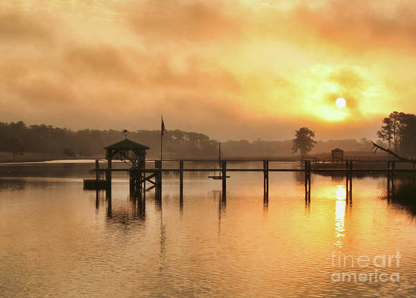 Wall Art - Photograph - Foggy Sunrise by Michelle Tinger
