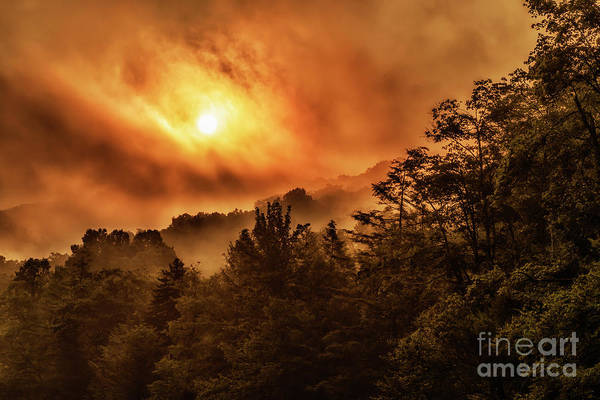 Photograph - Foggy Sunrise Monongahela National Forest by Thomas R Fletcher