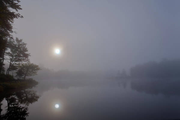 Photograph - Foggy Sunrise On West Lake by David Patterson