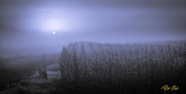 Photograph - Foggy Sunrise Over Mn Cornfields by Rikk Flohr