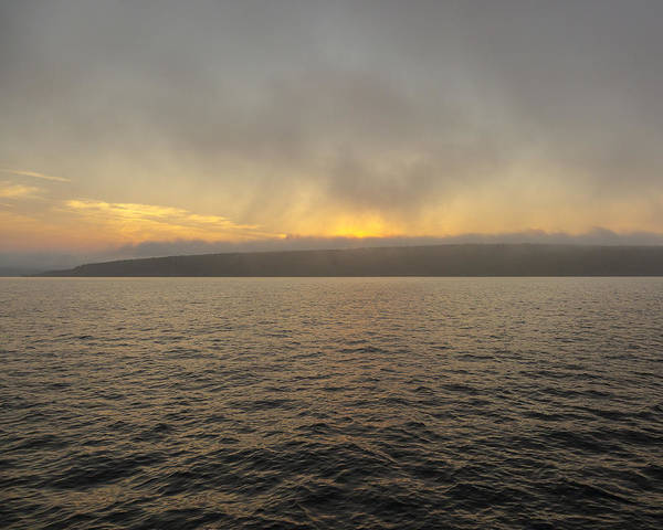 Photograph - Foggy Sunset by Jack R Perry