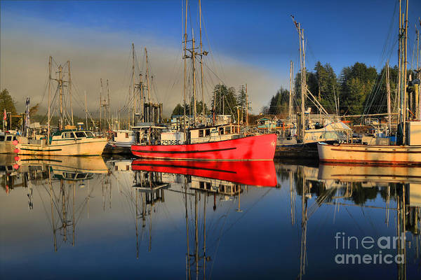 Port Of Vancouver Wall Art - Photograph - Foggy Ucluelet Port by Adam Jewell